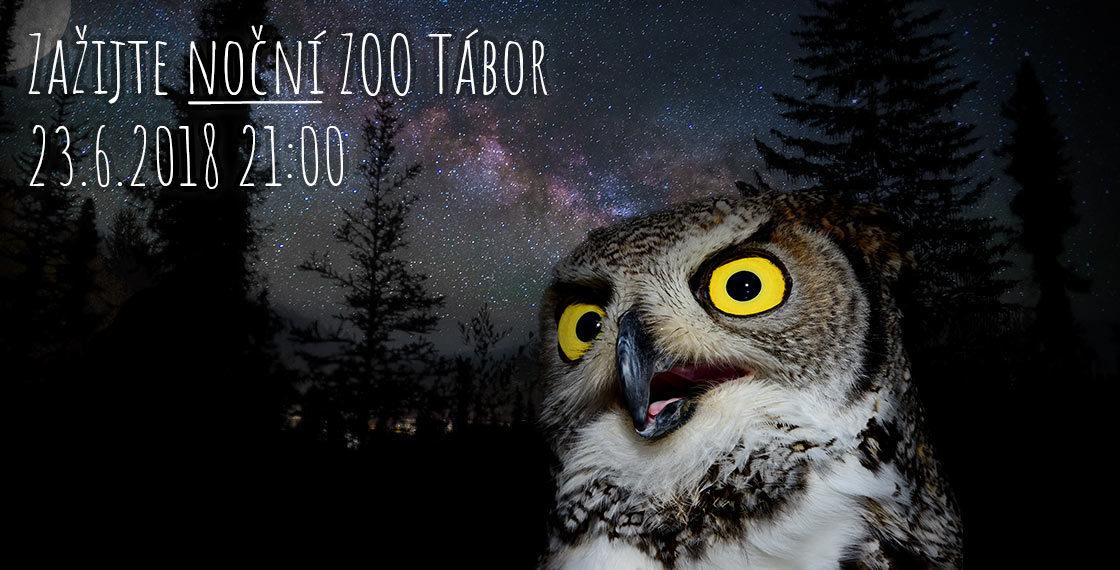 Zkuste ZOO Tábor v noci