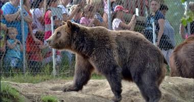 Na den ošetřovatelem v Zoo Tábor - zážitkový voucher