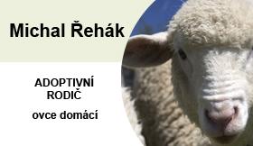 rehak-ovce-adopce
