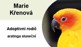 marie-krenova-aratinga
