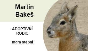 Martin Bakeš