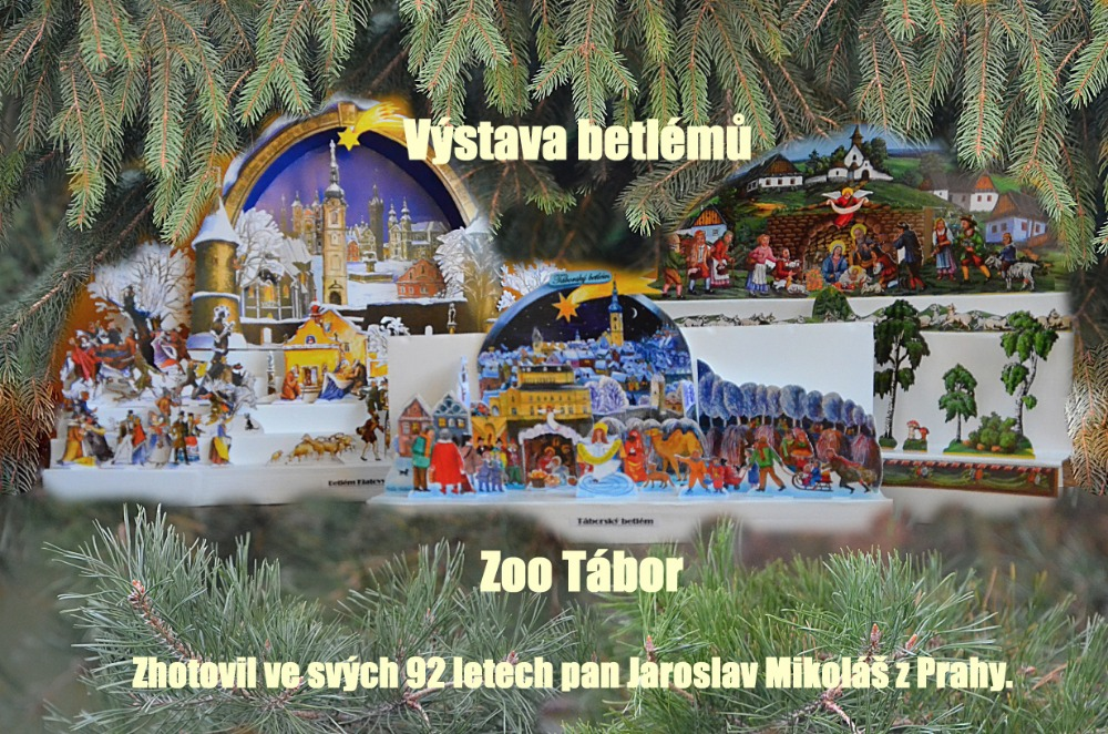 Výstava betlémů v zoo